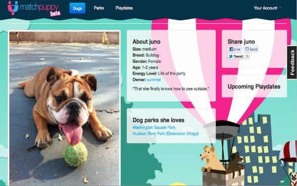 Dating website for dog owners