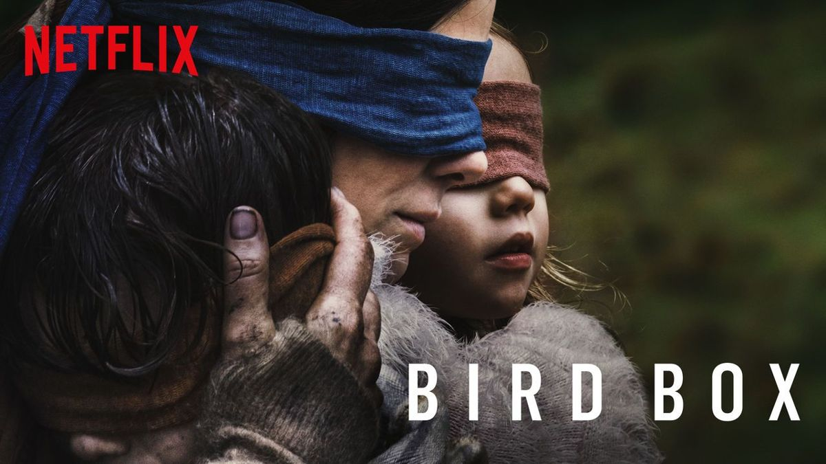 The Bird Box Social Media Challenge Has Caused Its First Accident